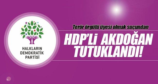 HDP Hakkari Milletvekili Akdoğan tutuklandı