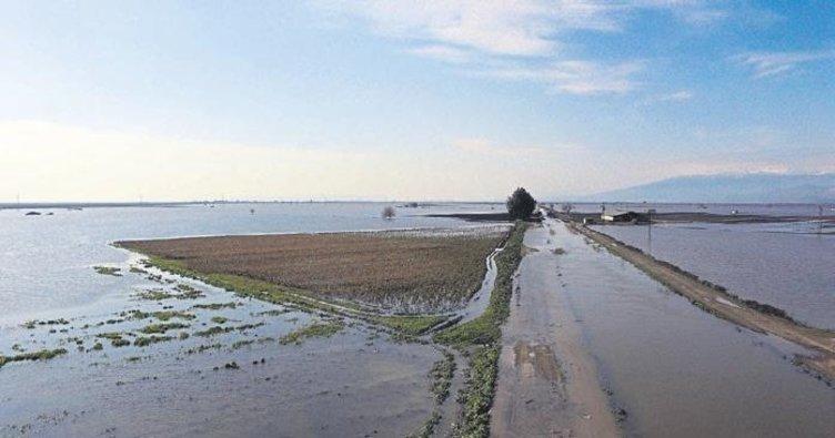 78 bin dekar tarım alanı zarara uğradı