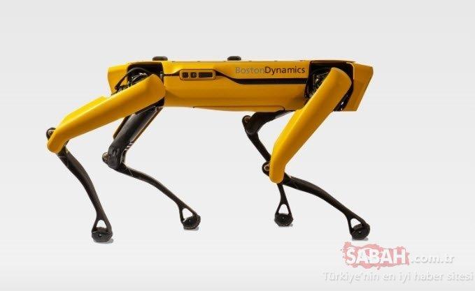 Robot köpek Ford fabrikasında çalışacak