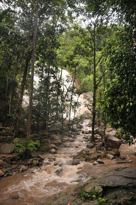 Hüznün gölgelediği cennet: Patani