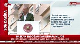 Cumhurbaşkanı Erdoğan'dan Giresun'da KOBİ'ler için 100 bin liraya kadar faizsiz kredi desteği müjdesi | Video