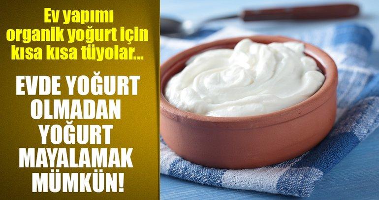 İşte ev yapımı organik yoğurt için kısa kısa tüyolar...