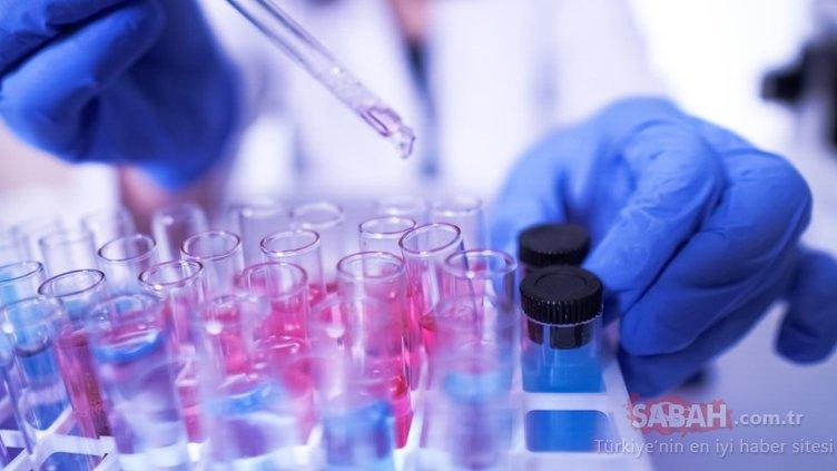 Çinli uzmanlardan son dakika açıklaması: Ölümcül türdeki corona virüs mutasyonu bulundu
