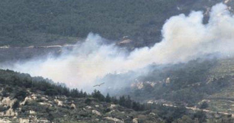 Foça'daki yangında PKK şüphesi