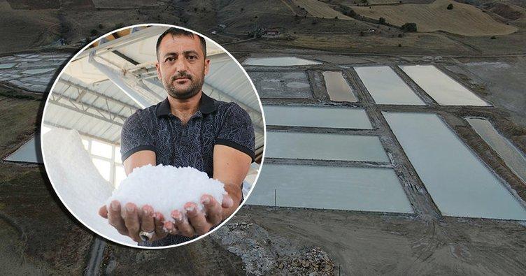 İki yıldır fiyat artışı yaşamayan tek ürün Sivas'ta! Beyaz altın olarak biliniyor