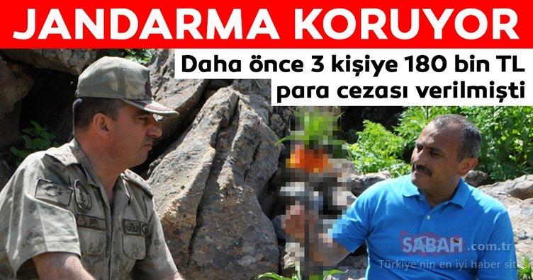 Tunceli'de ters laleler jandarma korumasında!