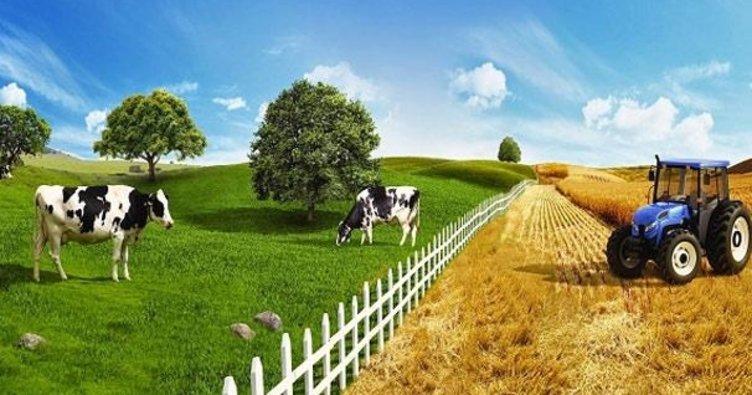 tarım resim ile ilgili görsel sonucu