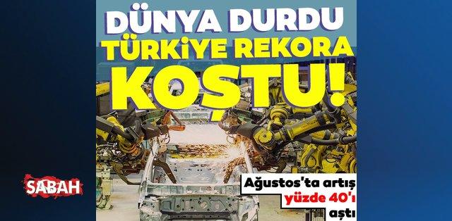 OTOMOBİL cover image