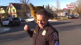 ABD'de röportaj sırasında polisin üzerine sokak kedisi atladı
