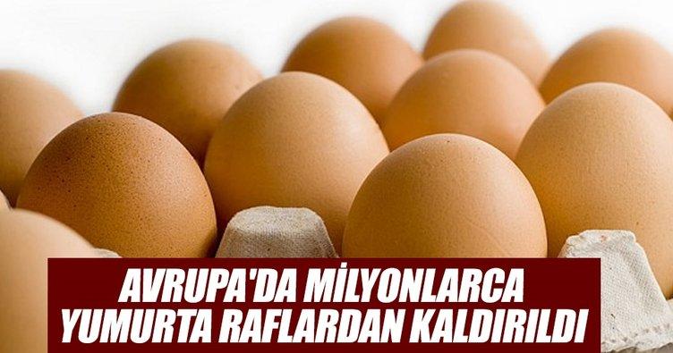 Avrupa'da milyonlarca yumurta raflardan kaldırıldı