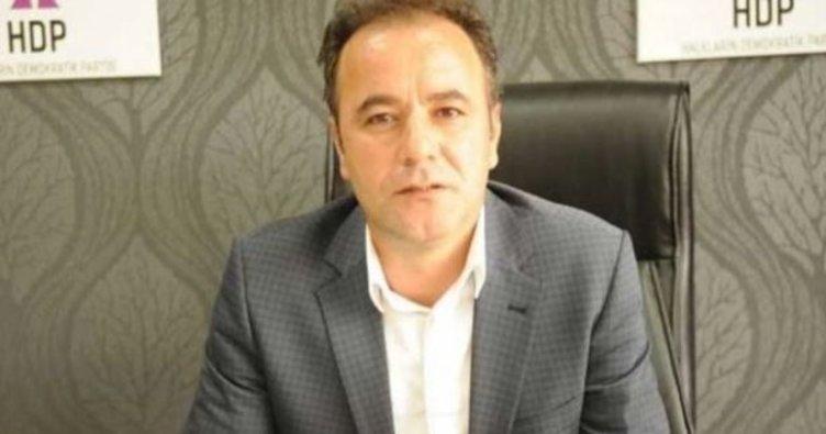 HDP Siirt İl Başkanı gözaltına alındı