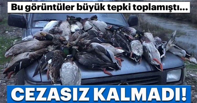 Kuş cenneti'ndeki ördek katliamı için büyük ceza!