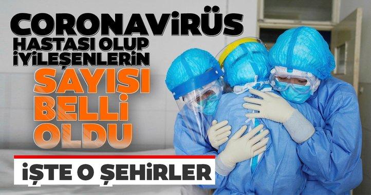 Son dakika... Coronavirüs hastası olup iyileşenlerin sayısı belli oldu! İşte coronavirüsten kurtulanların şehirleri ve sayıları