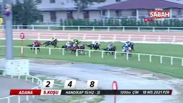Adana'da at yarışındaki feci kaza kamerada! Yoğun bakımdaki Jokey Samet Erkuş'un durumu hakkında açıklama