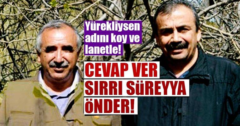 Cevap ver Sırrı Süreyya Önder!