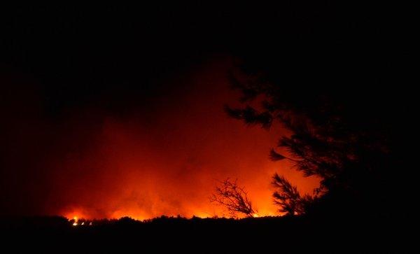 Tarihi Gelibolu Yarımadası'nda orman yangını! Havadan ve karadan müdahale sürüyor