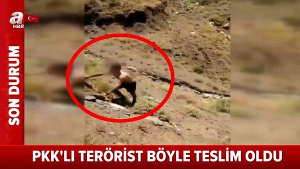Son Dakika Haberi: PKK'lı teröristin Mehmetçiklere teslim olma anı kamerada   Video
