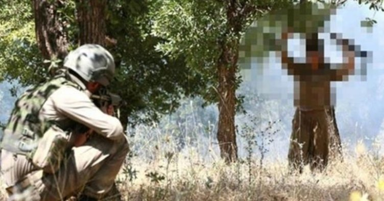 Son dakika: İçişleri Bakanlığı duyurdu! 1 terörist, Mardin'de güvenlik güçlerine teslim oldu