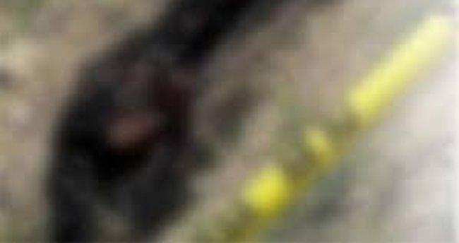 Mardin'de erkek cesedi bulundu