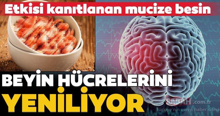 Beyin hücrelerini yenileyen süper besin...