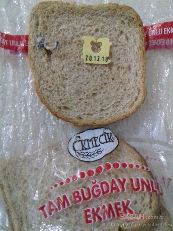 Ekmeğin içinden çıkan şey vatandaşı şoke etti
