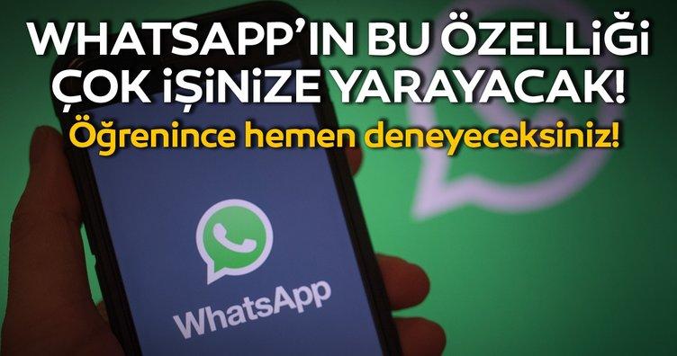 WhatsApp'ın bu özelliği çok işinize yarayacak! WhatsApp'ta bunu yaptığınız zaman...