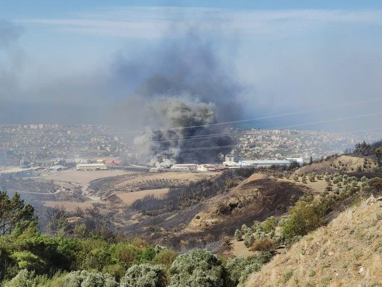 SON DAKİKA.. Hatay orman yangını son durum! Hatay'da orman yangını apartmanlara sıçradı