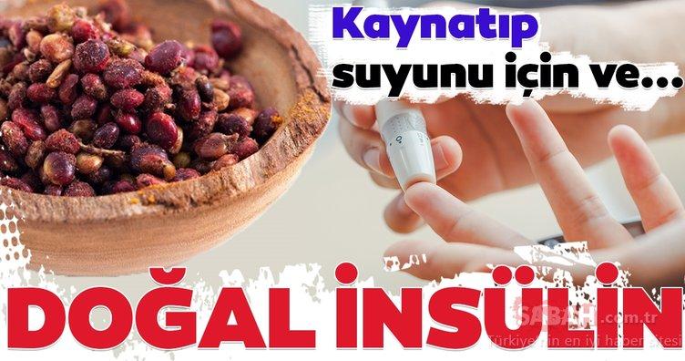 Bu besin doğal insülin gibi... İşte kan şekerine iyi gelen mucizevi besinler...