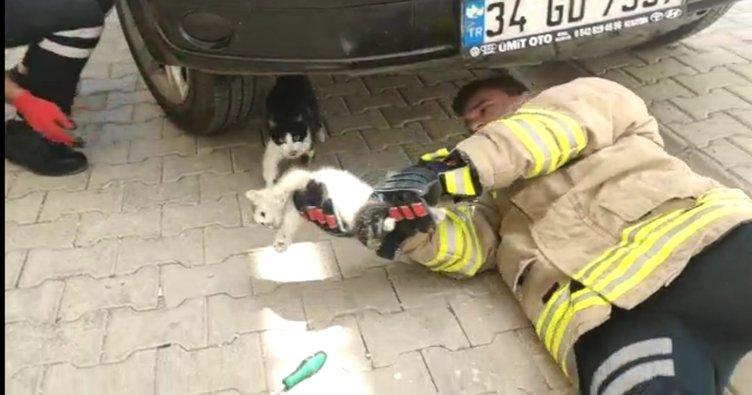 Nusaybin'de otomobil motoruna giren kediyi itfaiye ekipleri kurtardı