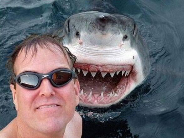 En çılgın selfie fotoğraflar