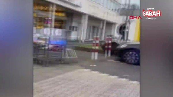 Almanya'da aç kalan yaban domuzu süpermarkete daldı | Video