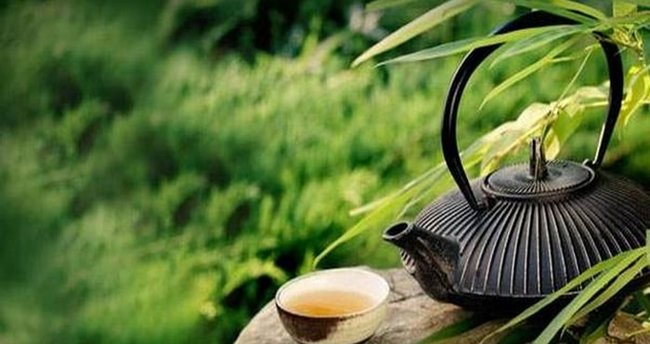 Yeşil çayın faydaları nelerdir ve zayıflatır mı? Yeşil çay içmenin yararları