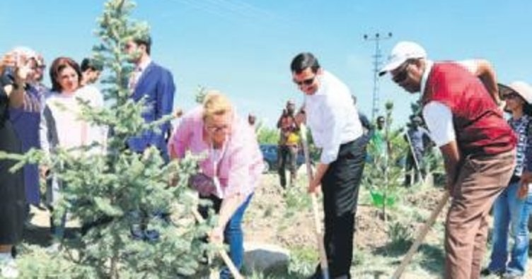 Tutsilerin anısına ağaç diktiler