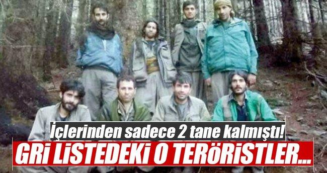 Gri listede aranan 2 teröristle ilgili yeni gelişme