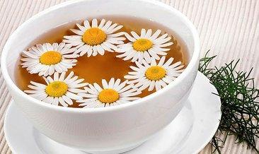 Papatya çayının faydaları nelerdir? Papatya çayı nasıl yapılır?