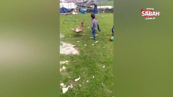 Kendilerine saldıran hindiye futbol öğrettiler | Video