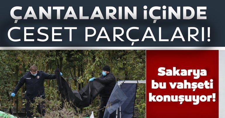 Sakarya'daki korkunç olayda SON DAKİKA gelişmesi: Çantalardan ceset parçaları çıkmıştı...
