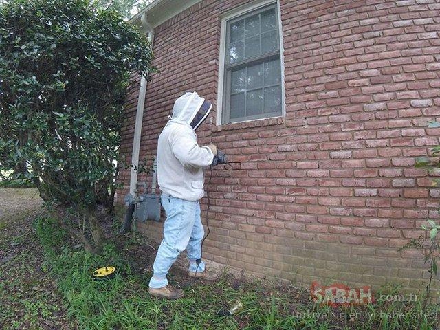 Evinin duvarını yıktı çıkanlara inanamadı!