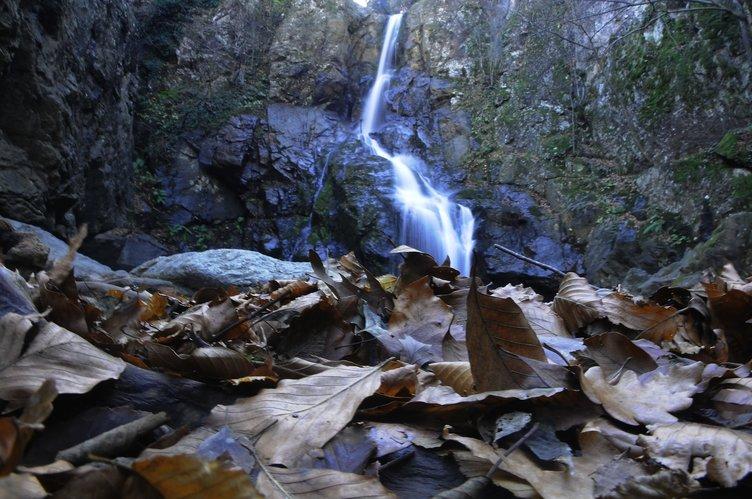 Yalova Kent Ormanı'nda sonbahar