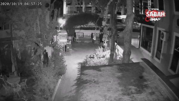 Marmaris'ten çaldıkları kolilerce sigara ile kaçtılar, İzmir'de yakalandılar...Hırsızlık anları kamerada | Video