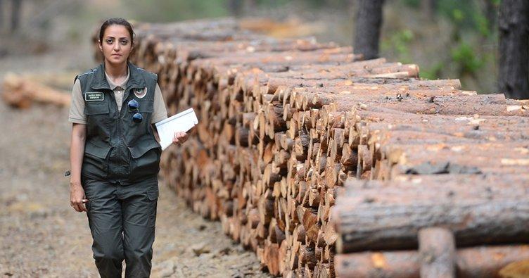Tarım ve Ormancılık Bakanlığı 5 bin personel alıyor! İşte alım tarihleri ve başvuru şartları açıklandı mı?