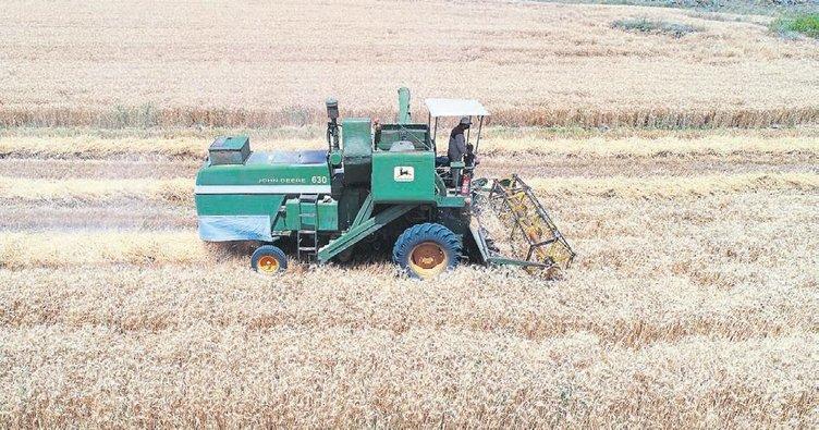 Buğday hasadı başladı çiftçinin yüzü gülüyor