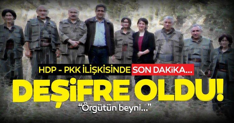 Son dakika haberi: PKK itirafçısından çarpıcı itiraflar! HDP işte böyle deşifre oldu...