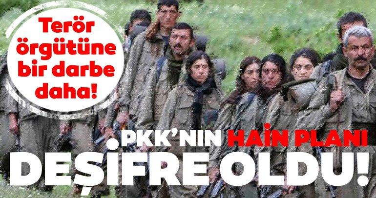 PKK'nın hain planı deşifre oldu! TİM'ler bölgeyi ablukaya aldı