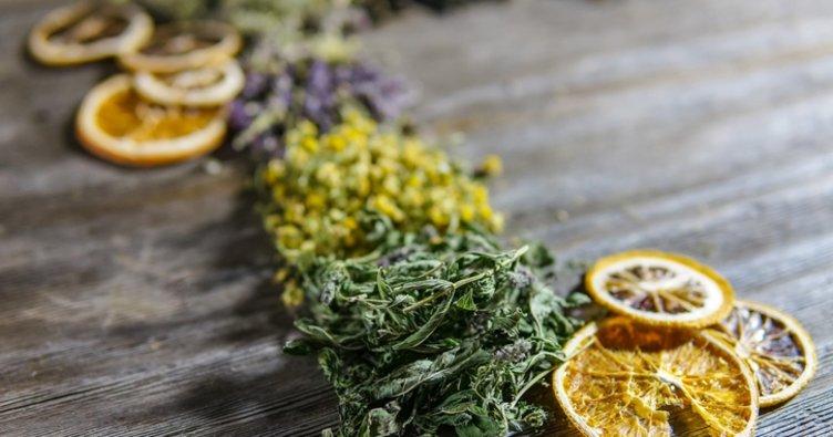 Melisa çayının faydaları nelerdir? Sakinleştirici etkisiyle Melisa Çayı faydaları