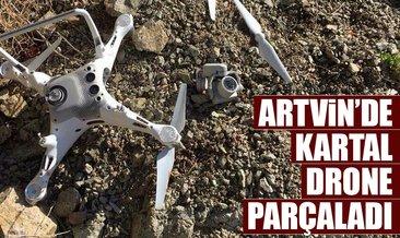 Artvin'de kartal drone parçaladı