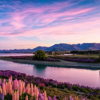 Yeni Zelanda'ya gitmek için 5 neden!