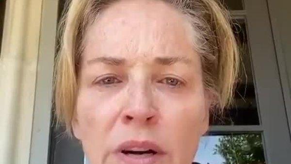 Kardeşi coronaya yakalanan Sharon Stone ateş püskürdü: Sizlerden biri yaptı | Video