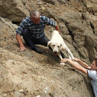 Uçurumda köpek kurtarma operasyonu