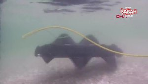 Yüzerek karaya çıkabilen robot görenleri hayerete düşürüyor